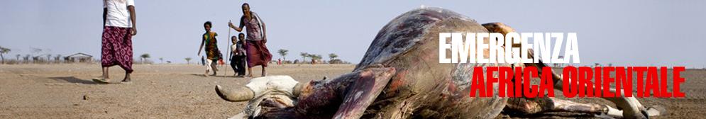 Si e' chiusa la Campagna di AGIRE per l'emergenza siccita' in Africa orientale