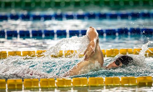 Campionati Italiani Assoluti Nuoto Primaverili Fin UnipolSai Andrea D'Arrigo